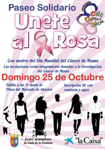Paseo Solidario Únete al Rosa<